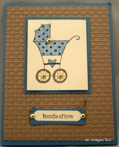 baby bundle baby card