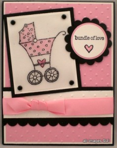 stampin up baby bundle