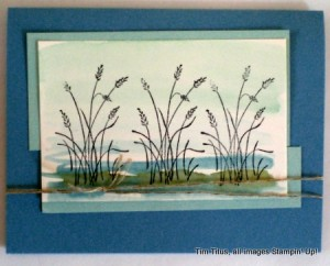 Wetlands stamp set
