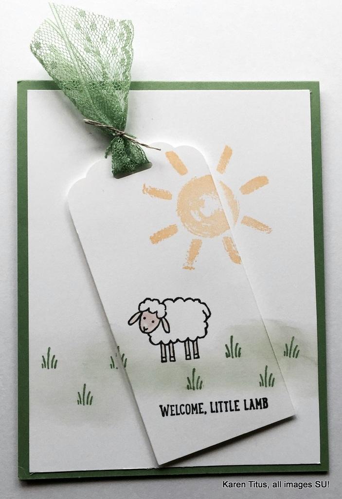 Barnyard Babies Baby Card