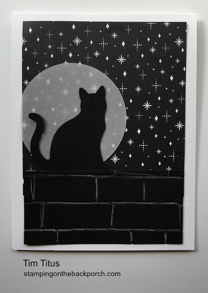 cat at night with pencil technique and brick wall folder