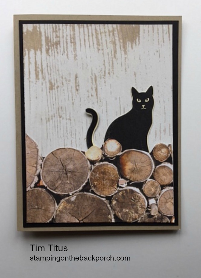 wood textures paper makes a cat behind the woodpile card for any occasion