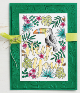 toucan card with Good Vibes stamp set