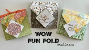 Amazing Fun Fold Cards