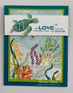 quick sea turtle card