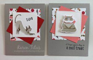 quick cat cards
