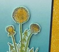Garden Wishes Bundle Stampin Up
