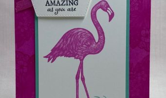 Friendly Flamingo SU! card
