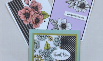 Card Kits in the Mail from Karen