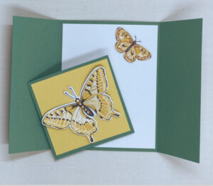 butterfly fun fold card