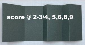 measurements for fun fold card